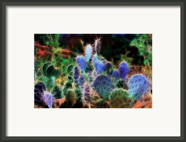 At Night The Desert Glows Framed Print By Ellen Heaverlo