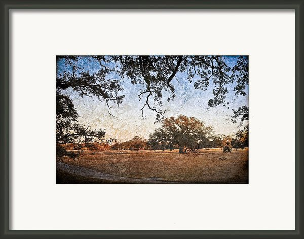 Audubon Golf Course Framed Print By Ray Devlin