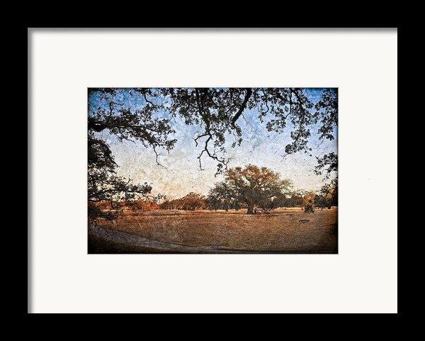 Audubon Golf Course Framed Print By Ray Devlin