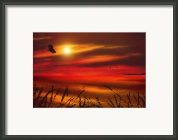 August Sunset Framed Print By Tom York Images