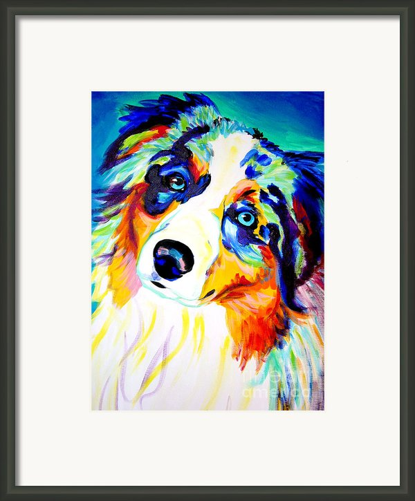 Aussie - Moonie Framed Print By Alicia Vannoy Call