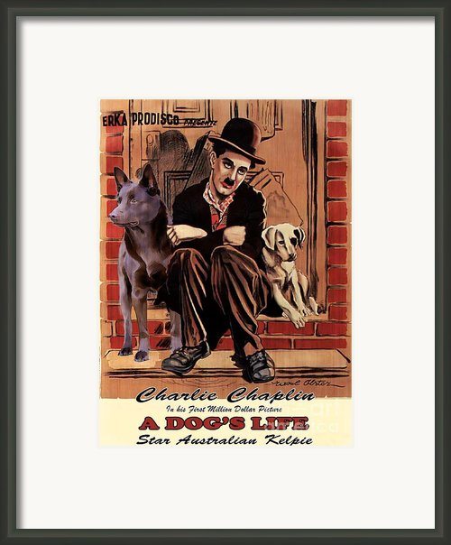 Australian Kelpie - A Dogs Life Movie Poster Framed Print By Sandra Sij