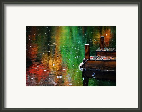 Autum Rain Framed Print By Darlene Terry