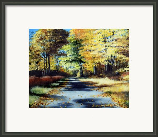 Autumn Colors Framed Print By Paul Walsh