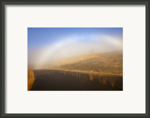 Autumn Fog Bow Framed Print By Mike  Dawson