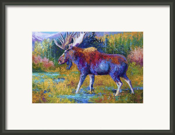 Autumn Glimpse Framed Print By Marion Rose