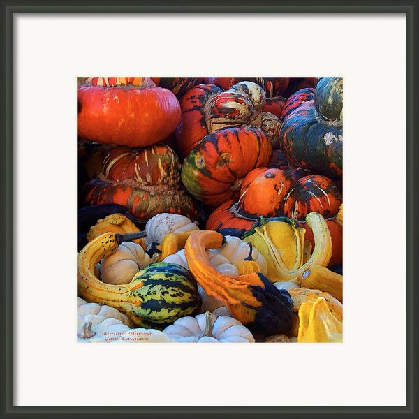 Autumn Harvest Framed Print By Carol Cavalaris