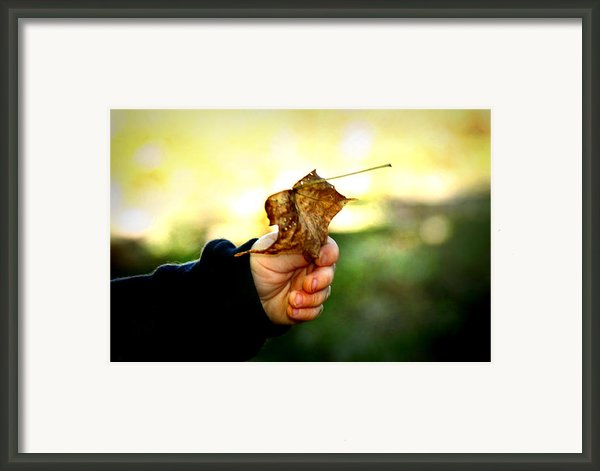 Autumn In Hand Framed Print By Kelly Hazel