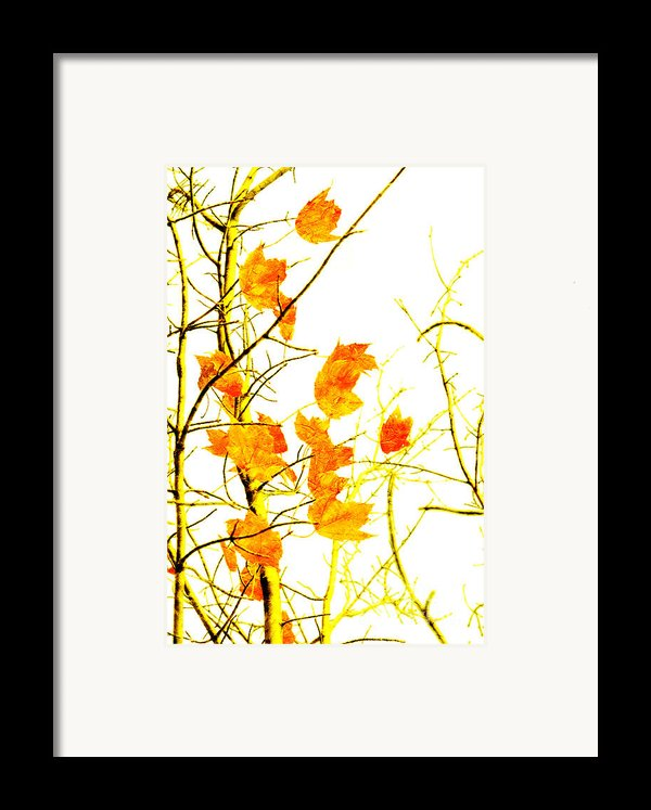 Autumn Leaves Abstract Framed Print By Andee Design