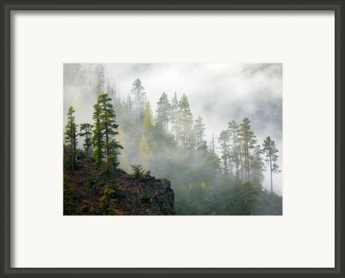 Autumn Mist Framed Print By Mike  Dawson