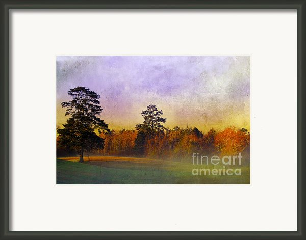 Autumn Morning Mist Framed Print By Judi Bagwell