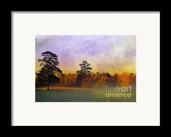 Autumn Morning Mist Framed Print By Judi Bagwell