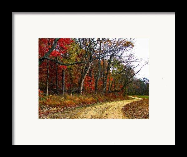 Autumn On Bottomland Road Framed Print By Julie Dant