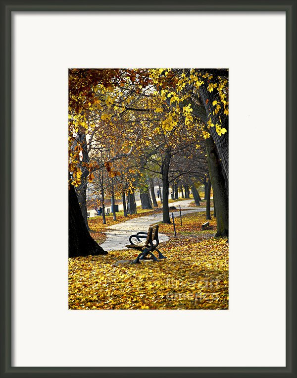 Autumn Park In Toronto Framed Print By Elena Elisseeva
