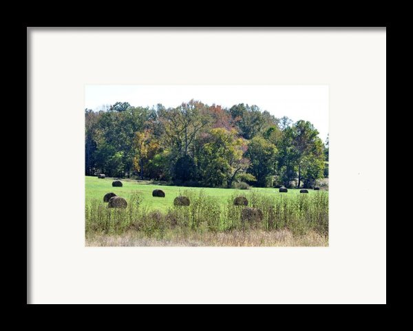 Autumn Pastures Framed Print By Jan Amiss Photography