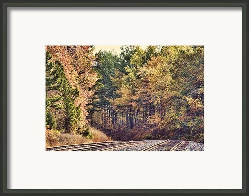 Autumn Railroad Framed Print By Douglas Barnard