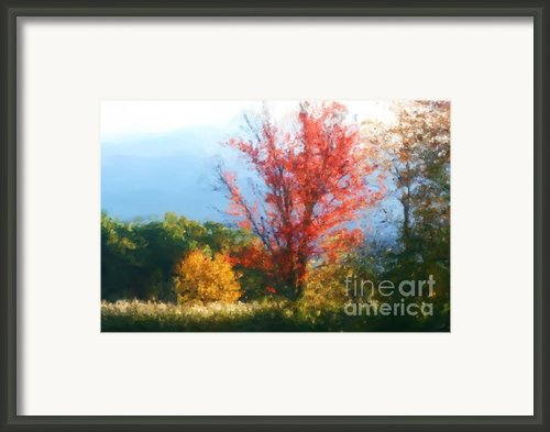 Autumn Red And Yellow Framed Print By Smilin Eyes  Treasures