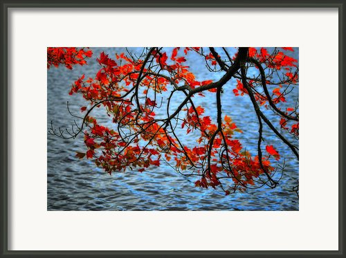 Autumn Scene - Little Pond  New Hampshire Framed Print By Thomas Schoeller