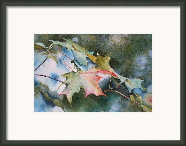 Autumn Sparkle Framed Print By Patsy Sharpe
