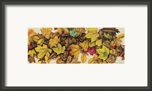 Autumn Splendor Framed Print By Jq Licensing