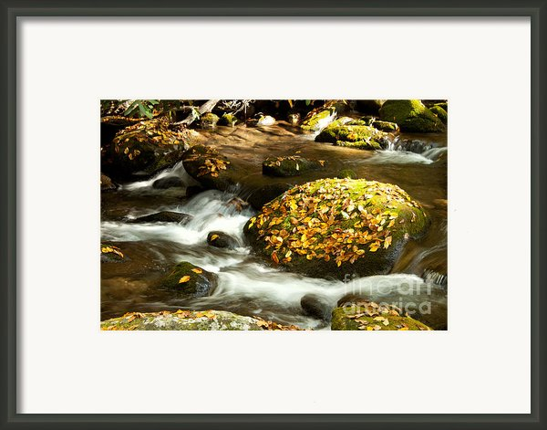 Autumn Stream Framed Print By Lena Auxier