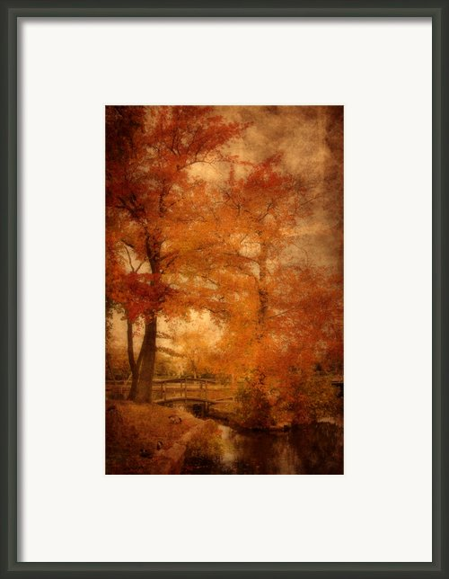 Autumn Tapestry - Lake Carasaljo Framed Print By Angie Mckenzie