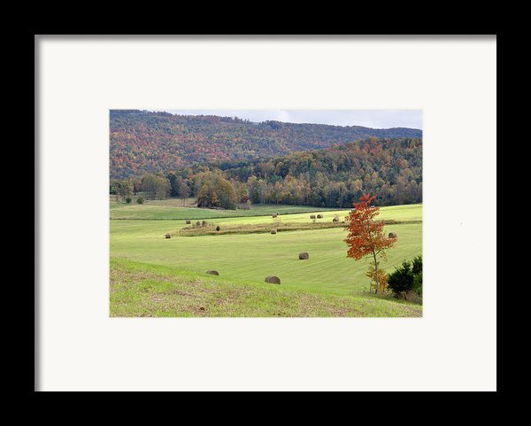Autumn Valley Hay Bales Framed Print By Jan Amiss Photography