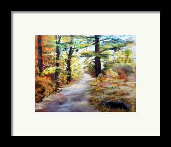 Autumn Walk In The Woods Framed Print By Trudy Morris