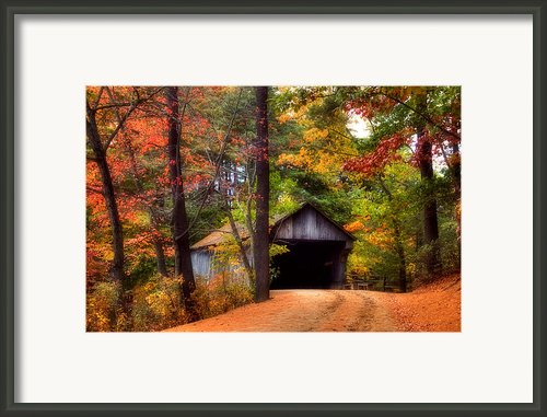 Autumn Wonder Framed Print By Joann Vitali