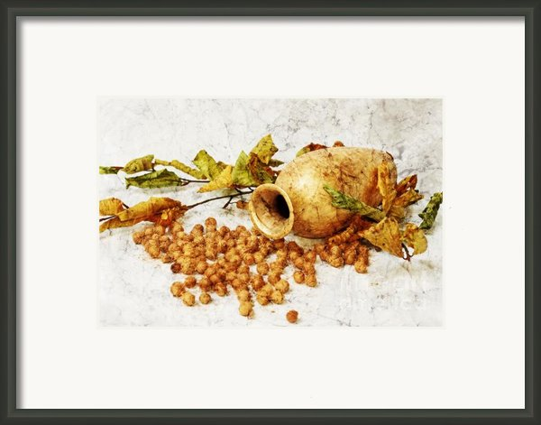 Autumnally Framed Print By Angela Doelling Ad Design Photo And Photoart