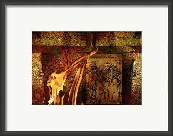 Back Bone #3 Framed Print By Janet Kearns