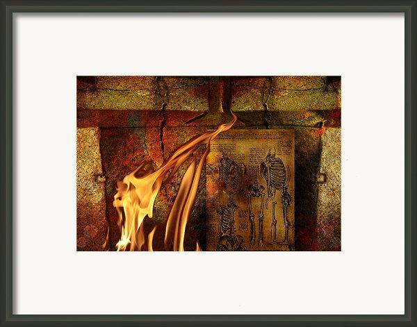 Back Bone #3 Framed Print By Janet Kearns