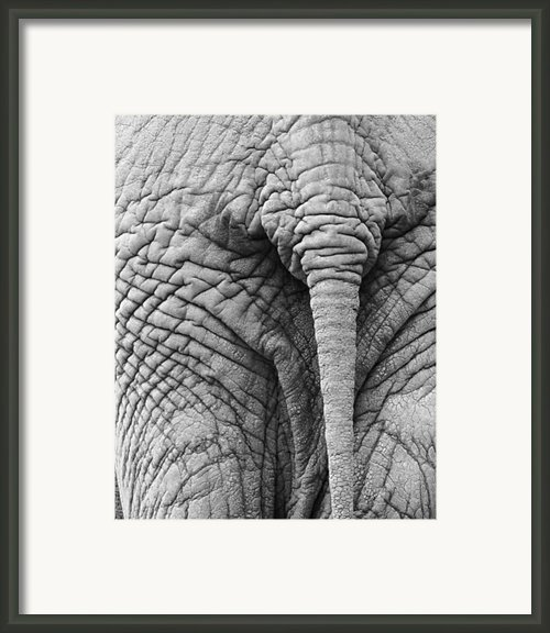 Back Side Framed Print By Marion Mccristall