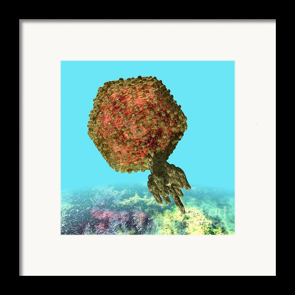 Bacteriophage P22 Framed Print By Russell Kightley