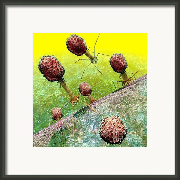 Bacteriophage T4 Virus Group 2 Framed Print By Russell Kightley