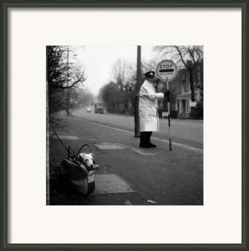 Bag Dog Framed Print By Jim Witts