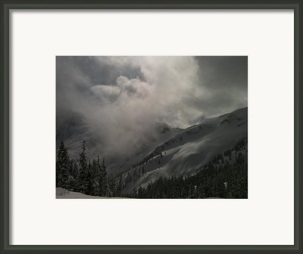 Baker Bliss Framed Print By Anna  Schnitzer