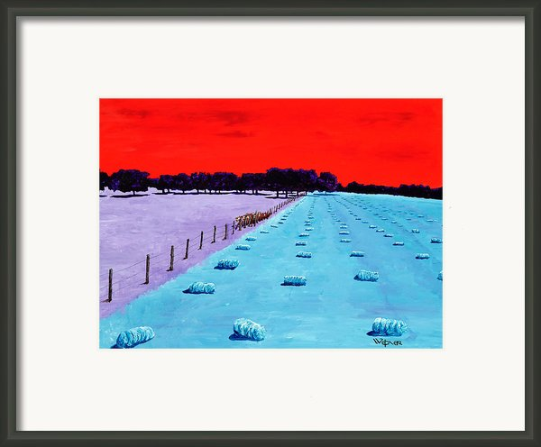 Baled Hay Framed Print By Randall Weidner