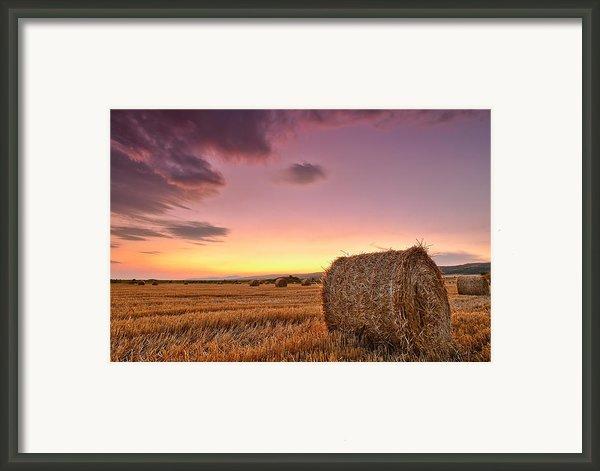 Bales At Twilight Framed Print By Evgeni Dinev