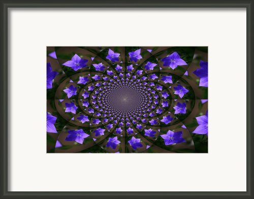 Balloon Flower Kaleidoscope Framed Print By Teresa Mucha