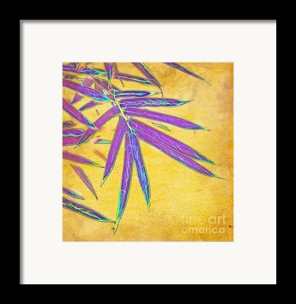 Bamboo Batik Ii Framed Print By Judi Bagwell