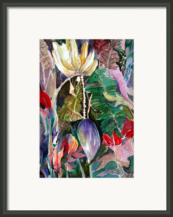 Banana And Pods Framed Print By Mindy Newman