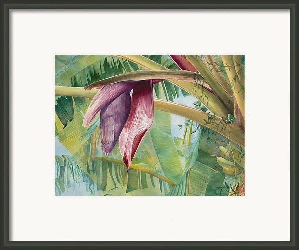 Banana Flower Framed Print By Annajo Vahle