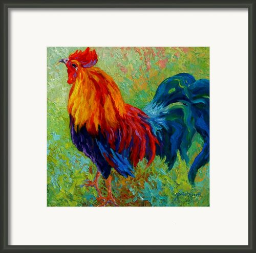 Band Of Gold - Rooster Framed Print By Marion Rose