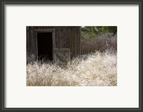 Barn Door Framed Print By Idaho Scenic Images Linda Lantzy