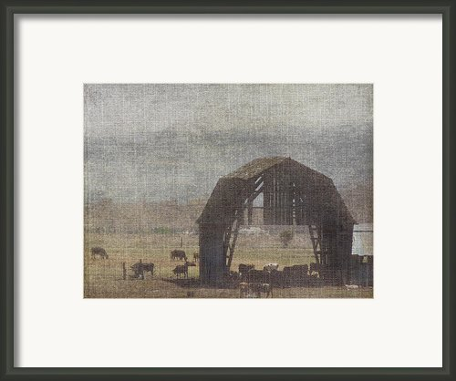 Barn Remnants Framed Print By Cindy Wright