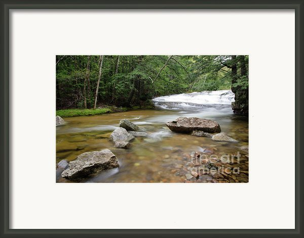 Bartlett Experimental Forest - Bartlett New Hampshire Usa Framed Print By Erin Paul Donovan