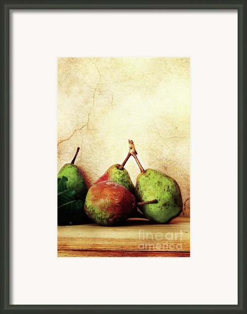Bartlett Pears Framed Print By Stephanie Frey
