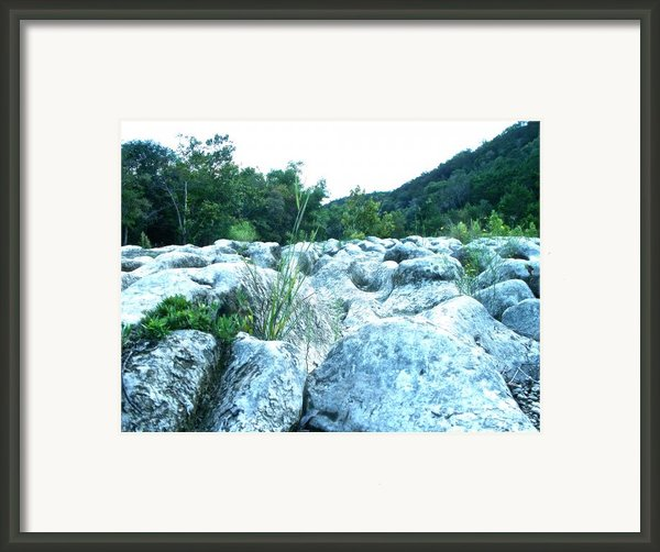 Barton Creek Dried Up Framed Print By Chuck Taylor
