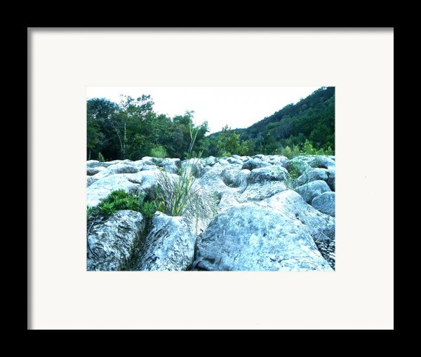 Barton Creek Dried Up Framed Print By Chuck Taylor